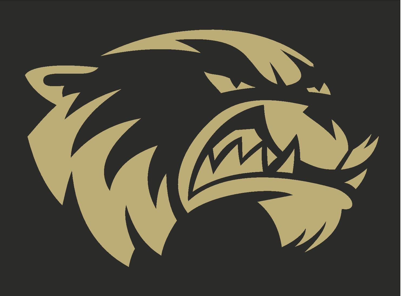 South Anchorage High School - Boy's Varsity Football