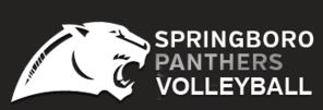 Springboro High School - Girls' Varsity Volleyball