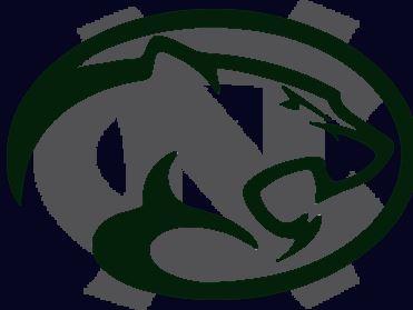Colts Neck High School - Boys Varsity Football