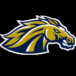 Casteel High School - Boys' Freshmen Football