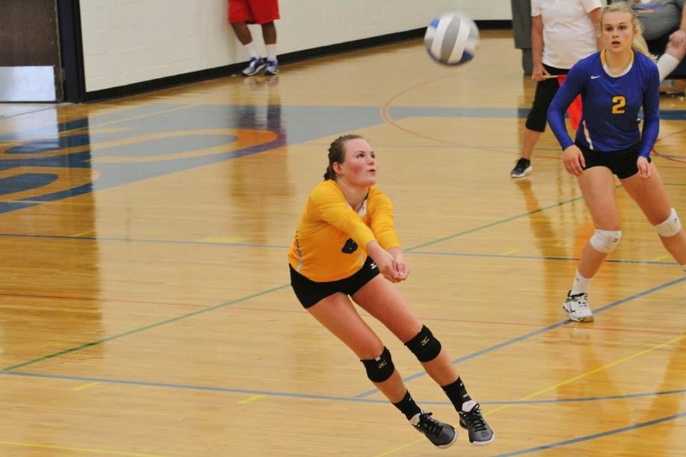 Image result for image of anna carney volleyball mn