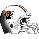 Chagrin Falls High School - Boys Varsity Football