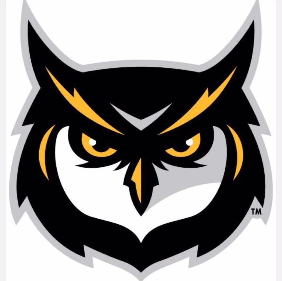 Owlets  - Owlets