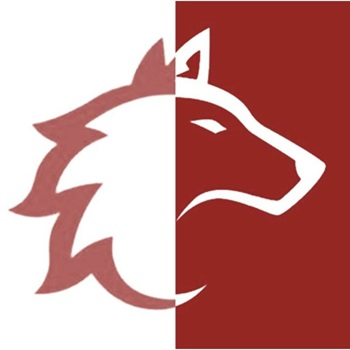 Ozu Wolves Football - Wolves Flag&Football