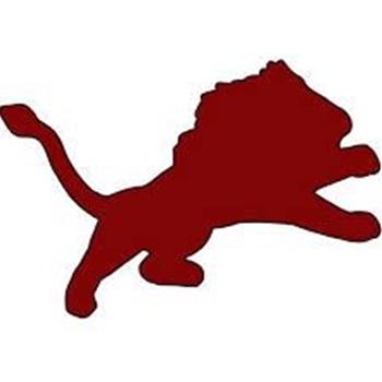 Brownwood High School - JV LIONS