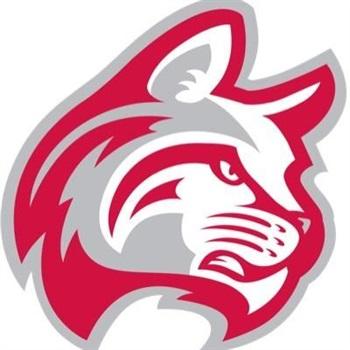 Indiana Wesleyan University - Indiana Wesleyan Women's Volleyball