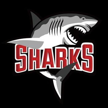 Gridiron Sports - Sharks (Future League Wuhan U8)