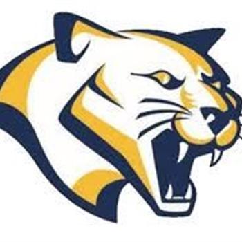 Franklin Academy High School - FA COUGARS VARSITY FOOTBALL