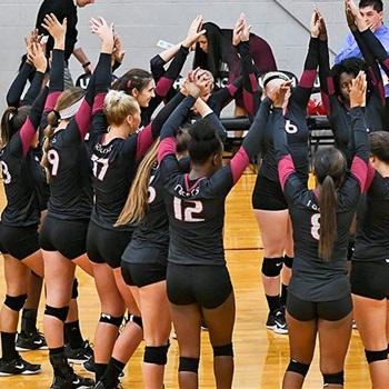 University of Northwestern Ohio - Northwestern Ohio Women's Volleyball