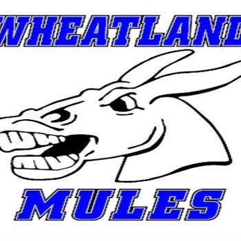 Wheatland High School - Boys Varsity Basketball
