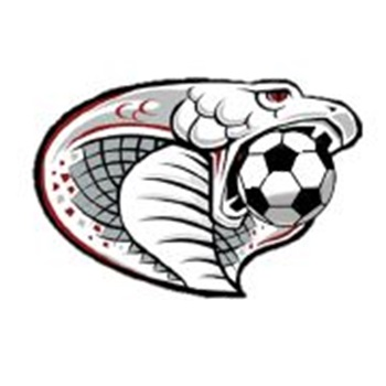 Triton High School - Boys Varsity Soccer
