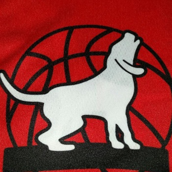 Fort Madison High School - Boys Varsity Basketball