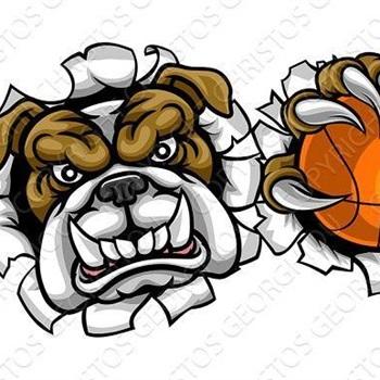 Clyde High School - Boys Varsity Basketball