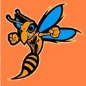 South Gibson County High School - Freshman Football