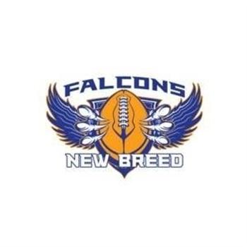 Carl Hayden High School - Boys Varsity Football