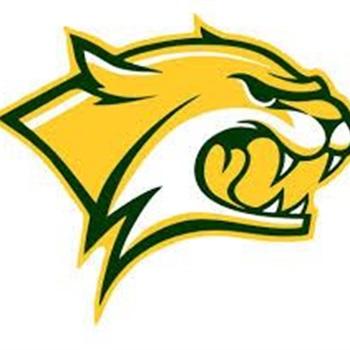Walker High School - Boys Varsity Football