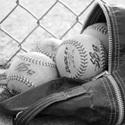 West Lyon High School - Girls Varsity Softball