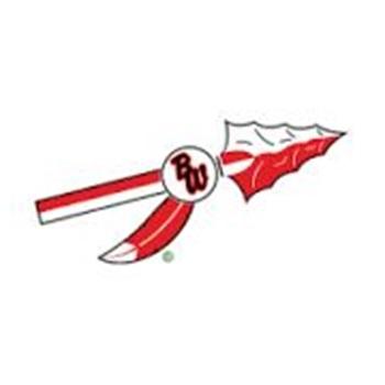 Baldwin-Woodville High School - Blackhawk Volleyball