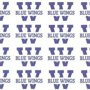 TV Jahn Wolfsburg - Wolfsburg Blue Wings