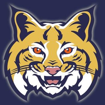 The Leeds Bobcats - The Leeds Bobcats