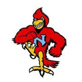Newman Catholic High School - Girls' Varsity Volleyball