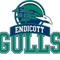 Endicott College - Womens Varsity Lacrosse
