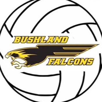 Bushland High School - Bushland Varsity Volleyball