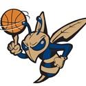 Essex High School - Hornets