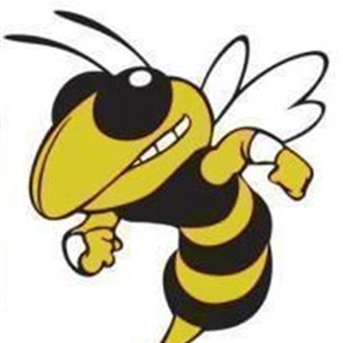 Memphis High School - Varsity Football