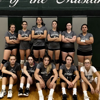 Evergreen Park High School - Varsity Volleyball