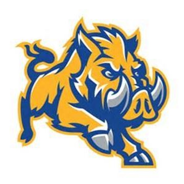 8c7c17761 Boys Varsity Football - Largo High School - Largo