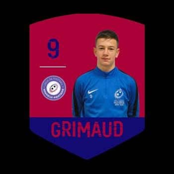 Georges GRIMAUD