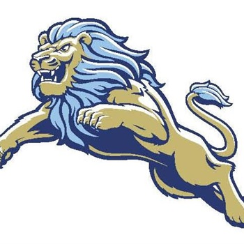 Daniel High School - JV Football