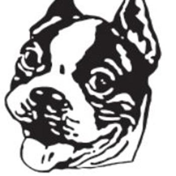 Bellows Falls High School - Mens Varsity Soccer