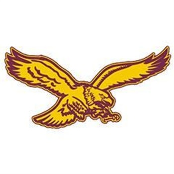 Fennimore High School - Girls Varsity Basketball