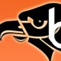 Bethel Park High School - Boys Varsity Football