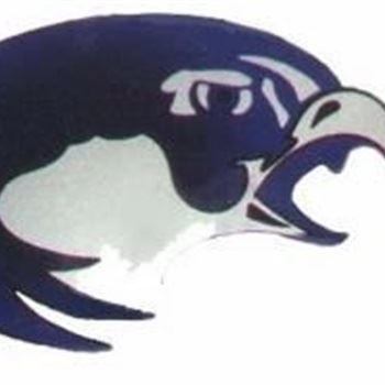 BHRV Nighthawks