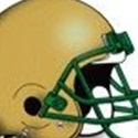 Fleming Island High School - Golden Eagle Varsity Football