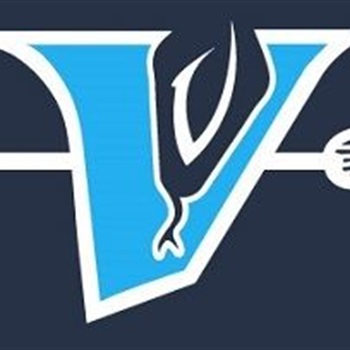 Troy Grubbs Youth Teams - Vipers