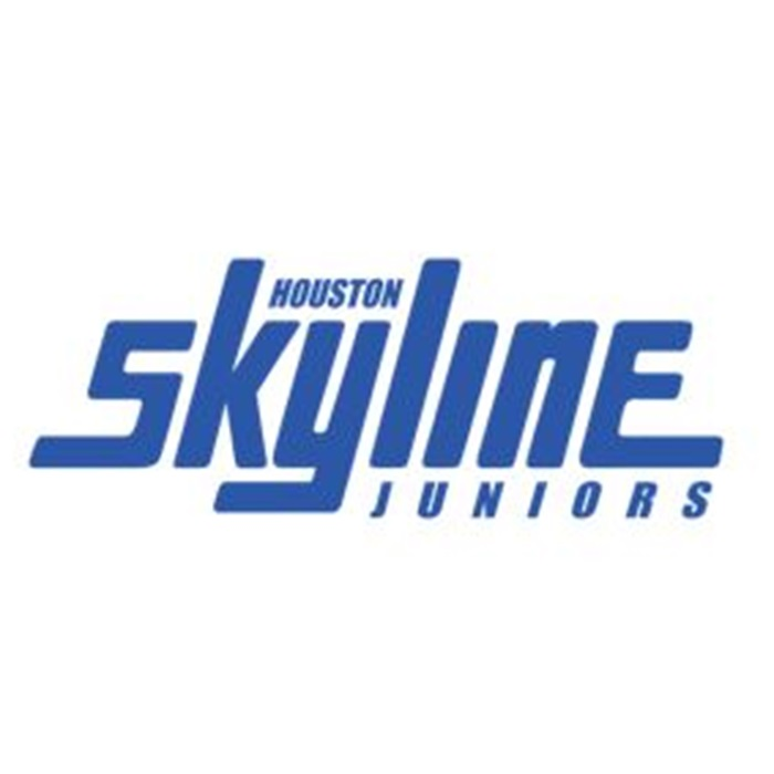 Houston Skyline 13 Royal Houston Skyline Jr S Houston Texas Volleyball Hudl