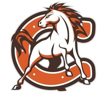 Cumberland High School - Cumberland Regional Girls Varsity Basketball