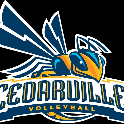 Cedarville University - Cedarville University Women's Volleyball