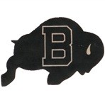 Buffalo High School - Boys Varsity Football