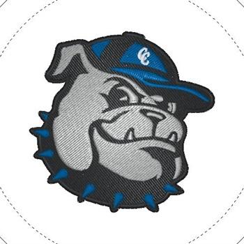 Clinton County High School - Boys Varsity Basketball
