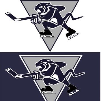 Rochester Century High School - Boys' Ice Hockey - Varsity