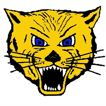 Lake Mills High School - Boys Varsity Basketball