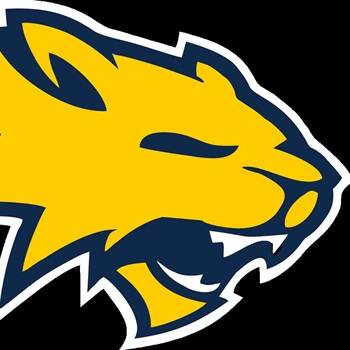 Neuqua Valley High School - Men's Varsity Basketball