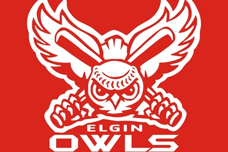 Image result for elgin owls baseball