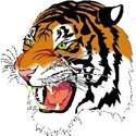 Marshall High School - Varsity Hockey
