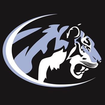 Eisenhower High School - Lady Tigers Basketball